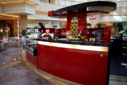 Kreationen-Design-Möbel-Bar-für-Outdoor-Café-Italienisch-Design-Segagredo-Moskau-Russland-Theke